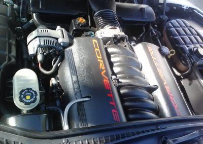 External Engine Cleaner, Tampa Bay, Fl